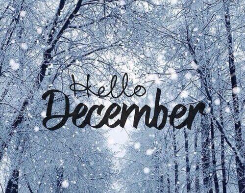 年末のご挨拶。(12月の予定)
