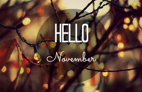11月の予定